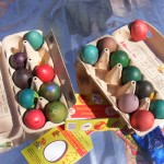 яйца, боядисани от децата, участници в еко-фестивала